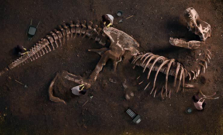 Asteroideneinschlag besiegelte Schicksal der Dinosaurier