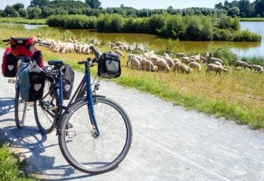 Beliebteste Fernradwege Deutschlands