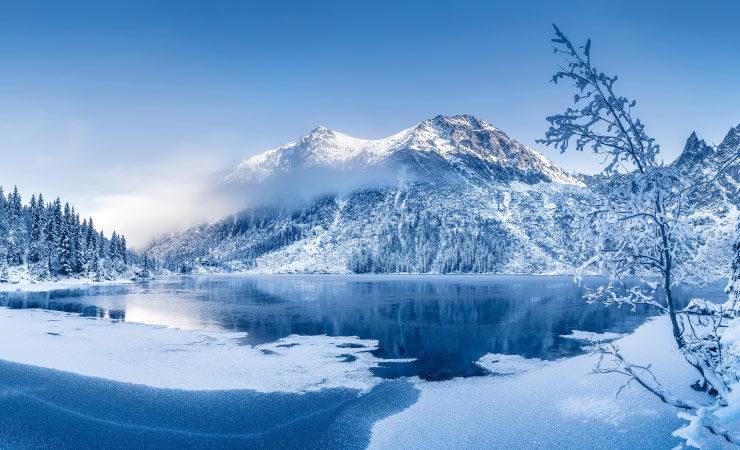 Bringen Forscher den Schnee tatsächlich zurück