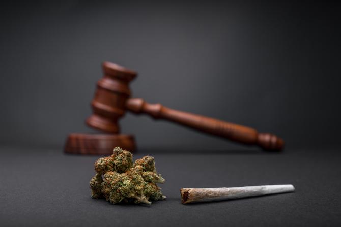 Cannabis Legalisierung in Deutschland