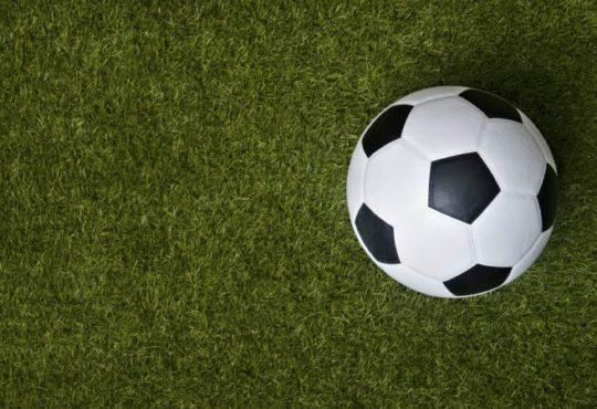 Christoph Daum favorisiert Ralf Rangnick als neuen Bundestrainer