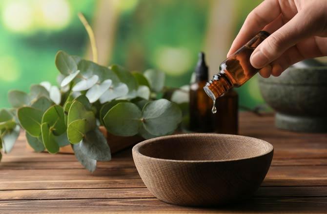 Eukalyptusöl Aromatherapie