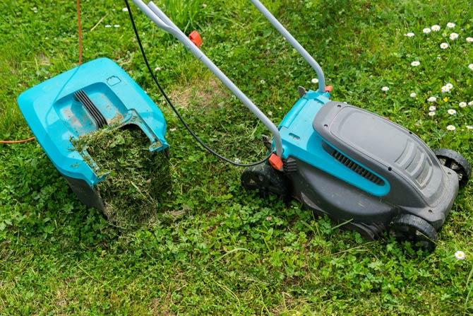 Feuchten Rasen mähen