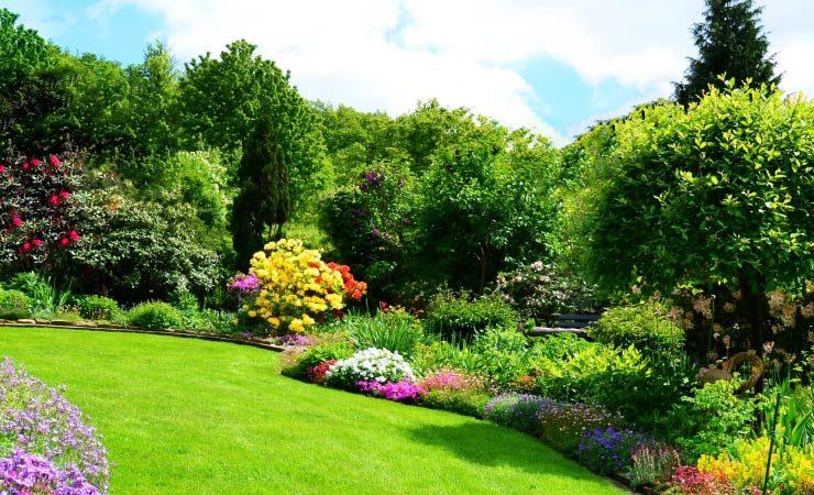 Garten frühlingstauglich machen