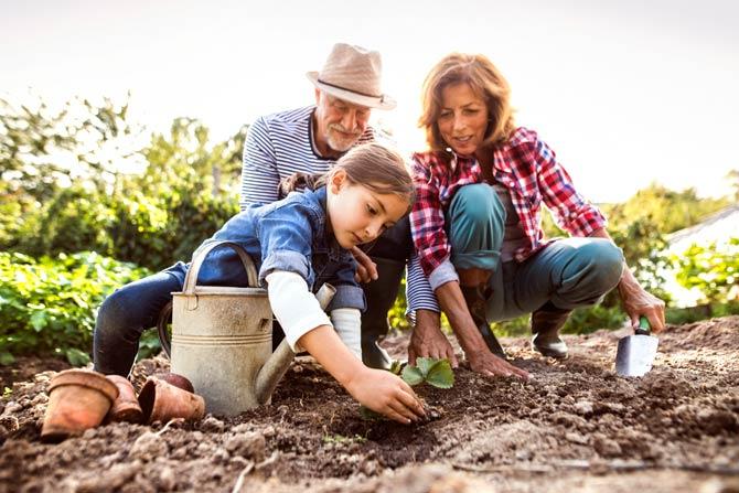 Gartenarbeit eine Wohltat für die Gesundheit
