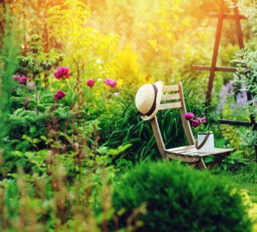 Gartentrends für den Sommer