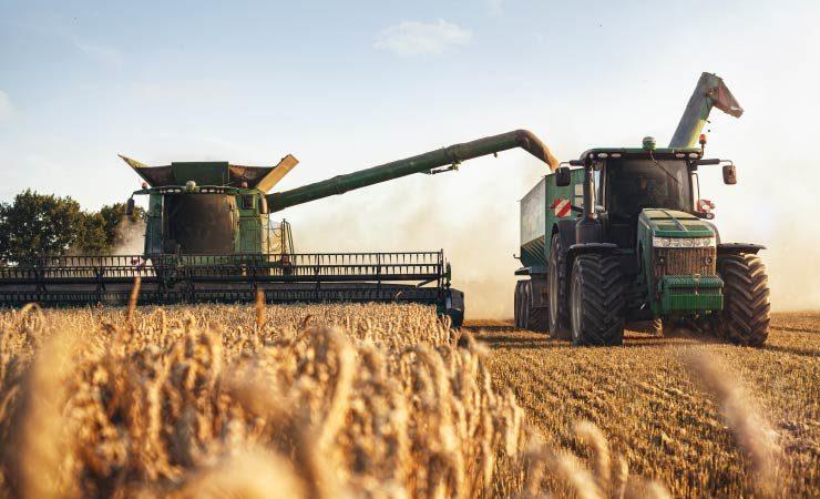 Beginn der Getreideernte - Erträge nicht optimal