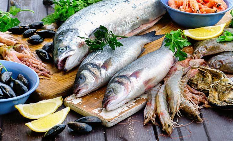 Gütesiegel für Fische und ihre Bedeutung