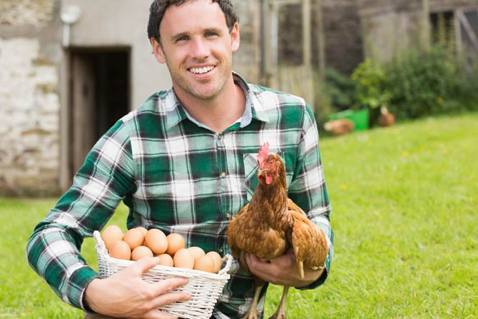 Hühner können bis zu 100 Gesichter erkennen