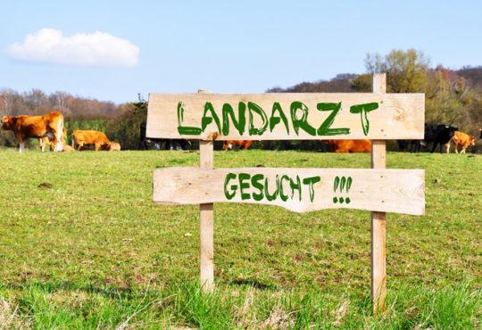 Gesetzentwurf zur Landarztquote
