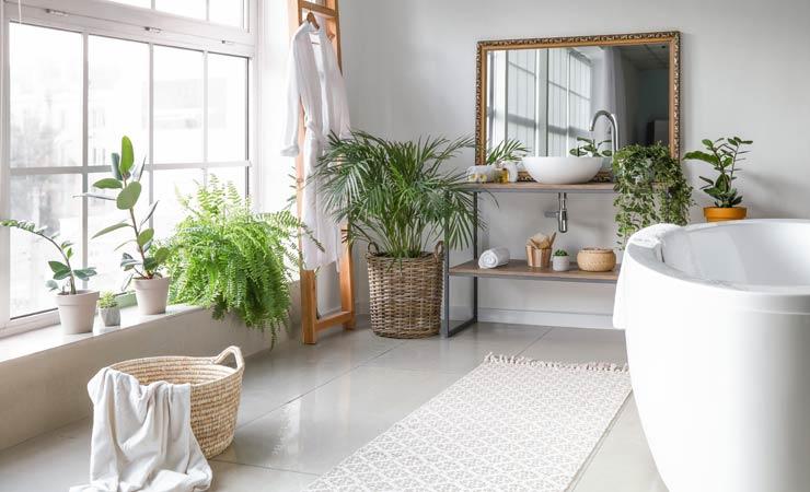 Pflanzen im Badezimmer