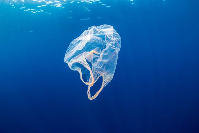 Plastikmüll - Problem für die Umwelt