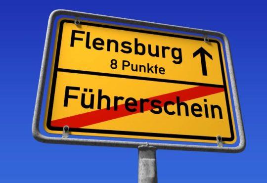 Punkte in Flensburg abfragen - So funktioniert's!