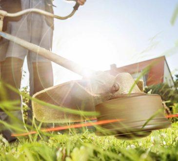 Rasenmähen Tipps