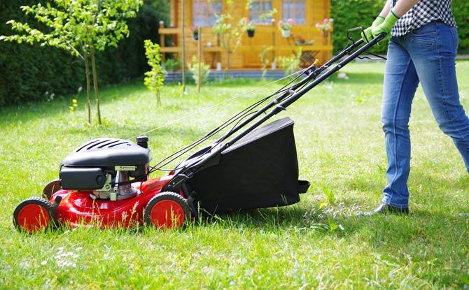 Rasenmäher Verordnung