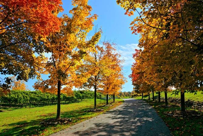 Schönes Herbstwetter