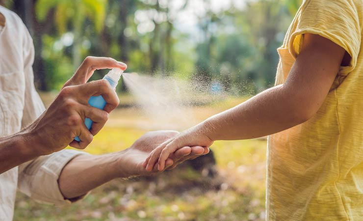 Schutz vor Mücken