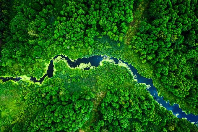 Umgang mit der Umwelt