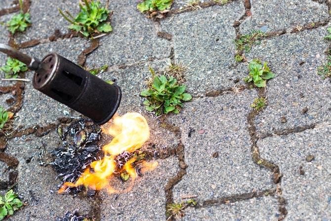 Wahl des Abflammgeräts