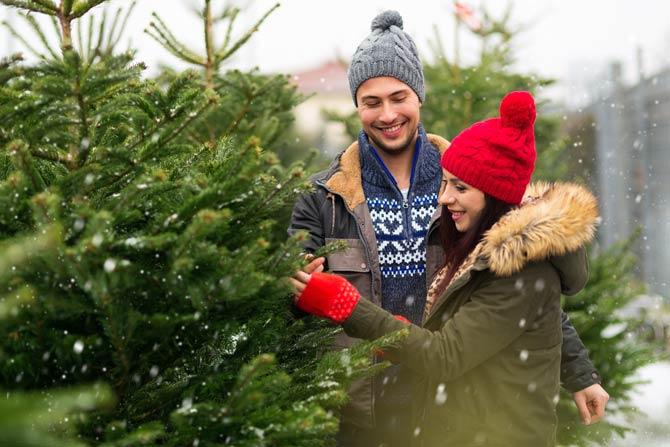 Weihnachtsbaum Kauf